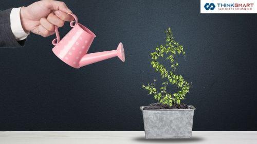 Quy trình xin cấp IRC – Giấy chứng nhận đăng ký đầu tư